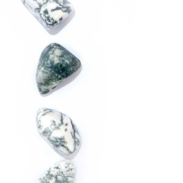Tree agate at surrender to happiness
